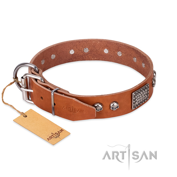 Corrosion resistant fittings on comfy wearing dog collar