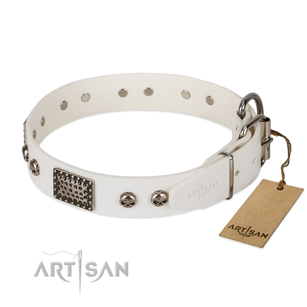 Corrosion proof fittings on comfy wearing dog collar