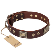 """Loving Owner"" FDT Artisan Decorated Leather Belgian Malinois Collar with Plates and Studs"