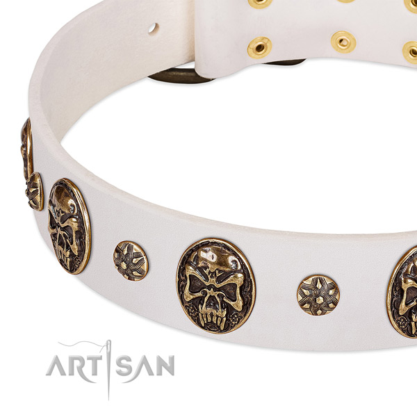 Durable embellishments on natural genuine leather dog collar for your pet