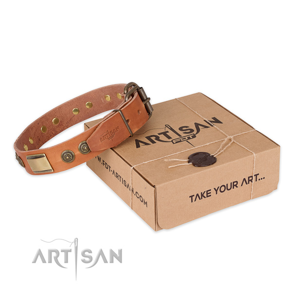 Reliable buckle on full grain genuine leather dog collar for everyday walking