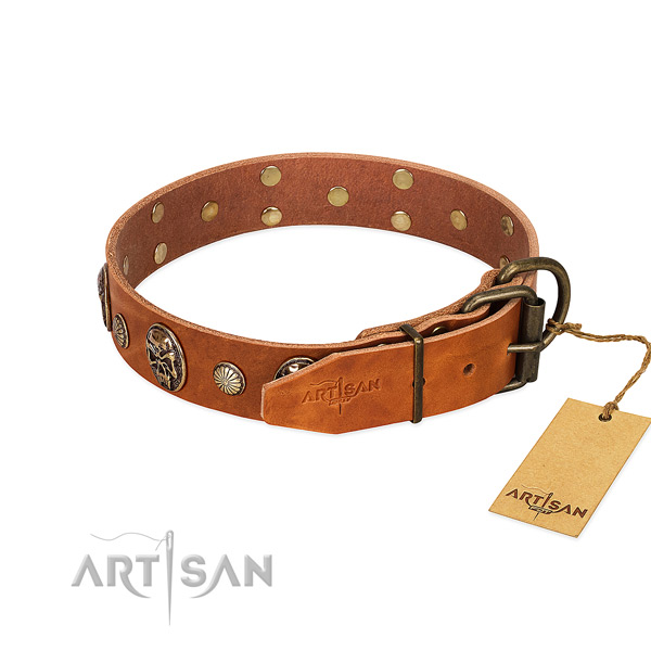 Reliable buckle on full grain leather collar for stylish walking your four-legged friend