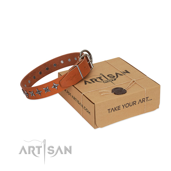 Easy wearing dog collar of strong full grain leather with adornments