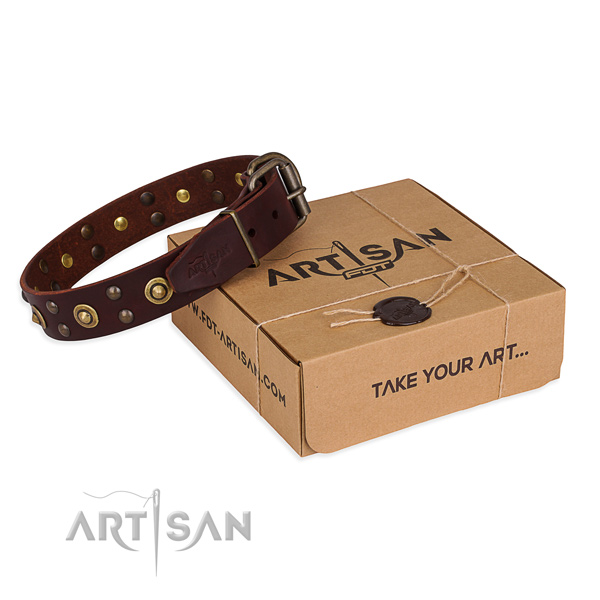 Reliable buckle on full grain natural leather collar for your beautiful four-legged friend