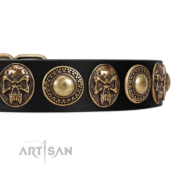 Full grain genuine leather dog collar with embellishments for everyday walking