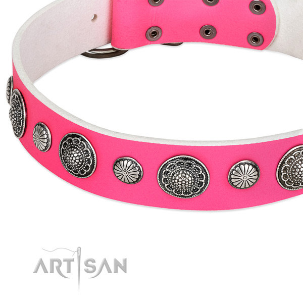 Full grain natural leather collar with corrosion resistant fittings for your handsome canine