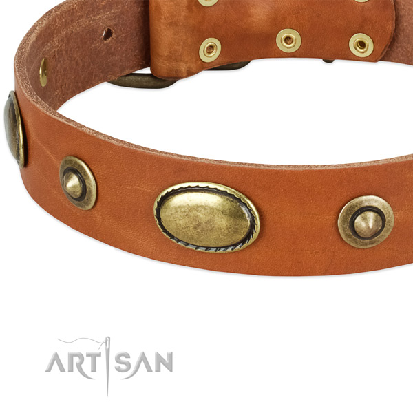 Strong decorations on full grain leather dog collar for your dog