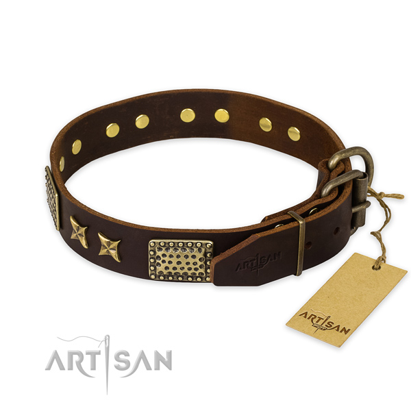 Corrosion resistant hardware on leather collar for your beautiful canine