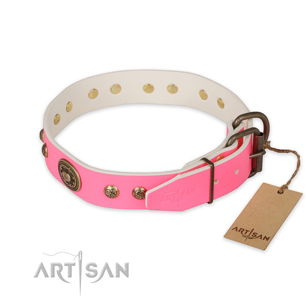 Corrosion proof hardware on natural genuine leather collar for everyday walking your four-legged friend