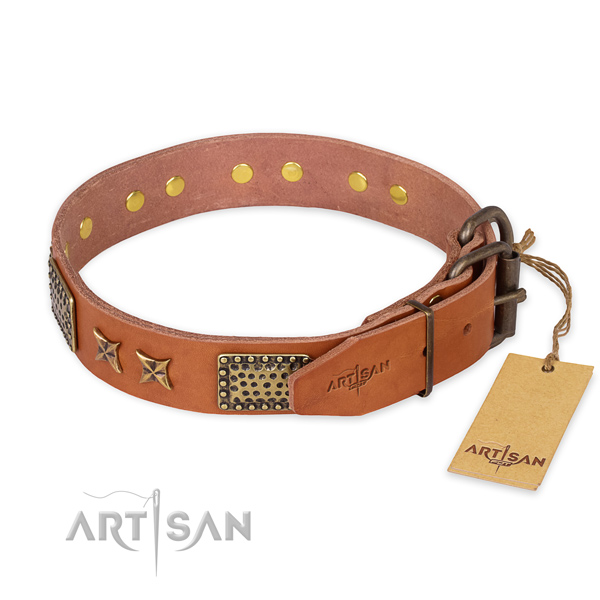 Durable fittings on full grain genuine leather collar for your beautiful four-legged friend