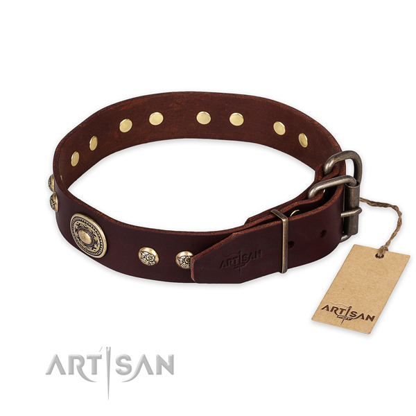 Corrosion resistant traditional buckle on natural leather collar for basic training your canine