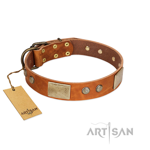 Easy adjustable full grain natural leather dog collar for everyday walking your dog