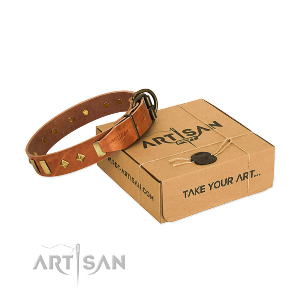 Daily walking gentle to touch full grain leather dog collar with studs