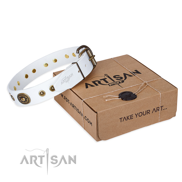 Full grain leather dog collar made of reliable material with rust-proof buckle