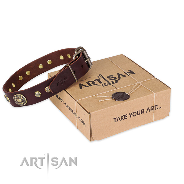 Corrosion resistant hardware on full grain leather dog collar for fancy walking