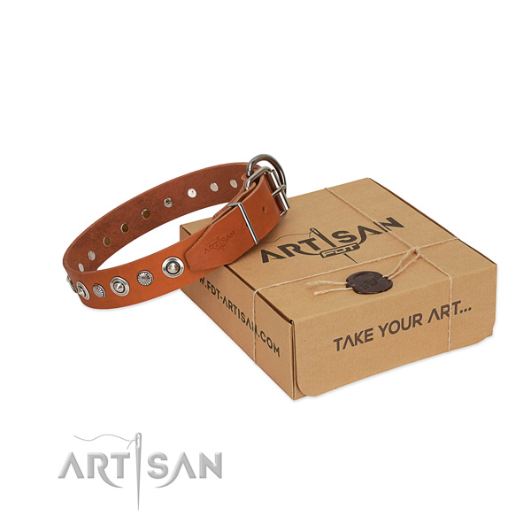 High quality natural leather dog collar with top notch adornments