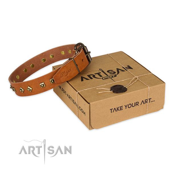 Corrosion proof hardware on natural leather dog collar for comfy wearing