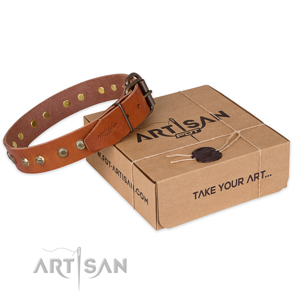 Strong D-ring on full grain genuine leather collar for your handsome dog