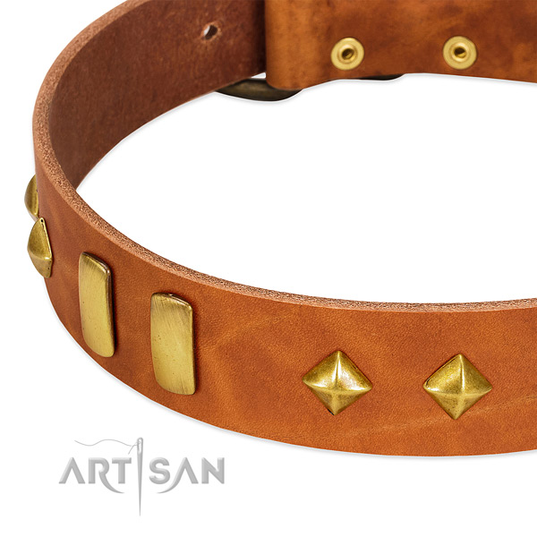 Handy use genuine leather dog collar with designer adornments