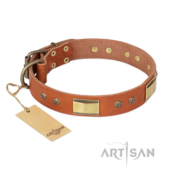Stunning full grain genuine leather collar for your dog