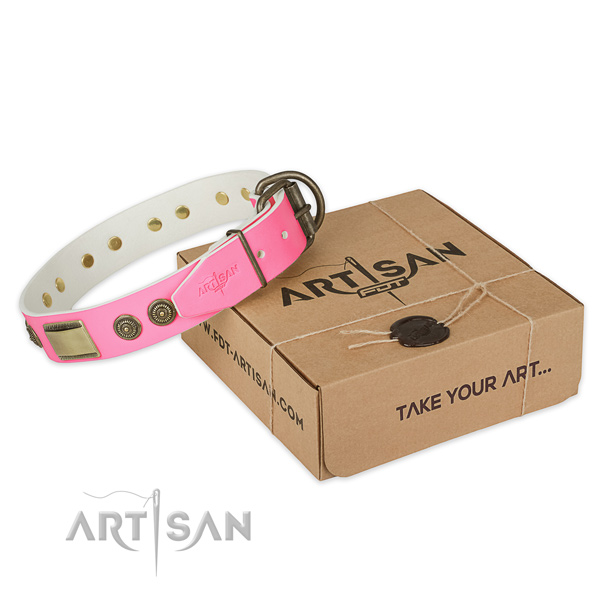Rust-proof fittings on dog collar for stylish walking