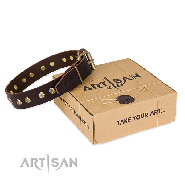 Strong traditional buckle on full grain leather collar for your impressive dog