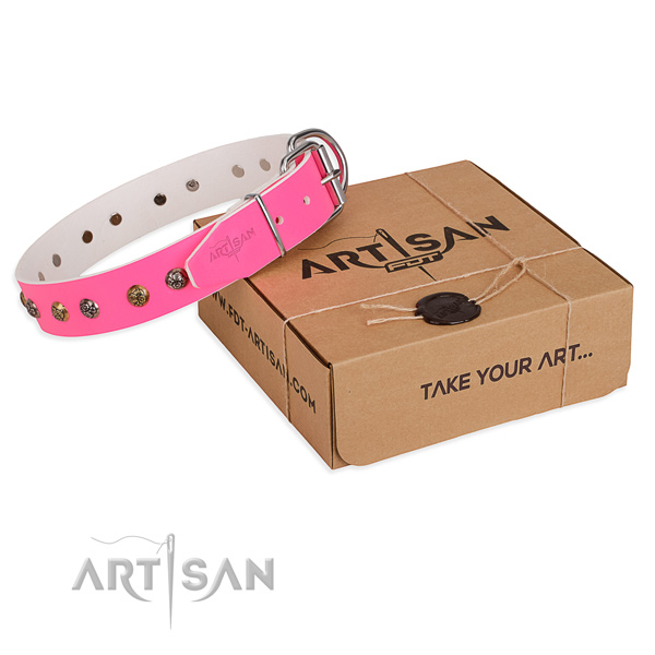Fancy walking dog collar with Stylish design strong decorations