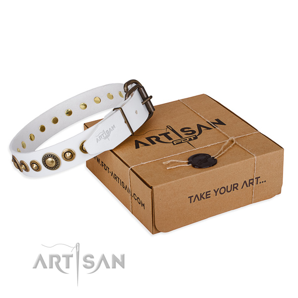 Quality leather dog collar crafted for comfortable wearing