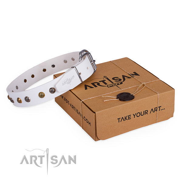 Stylish walking dog collar with Unique strong decorations