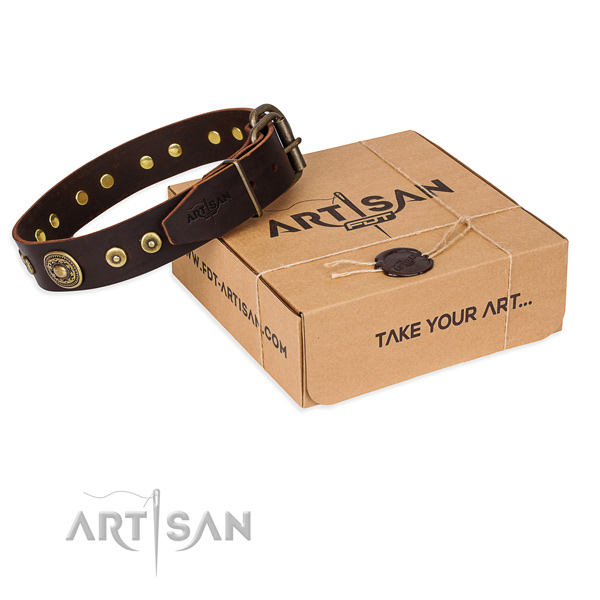 Full grain natural leather dog collar made of soft to touch material with rust resistant fittings