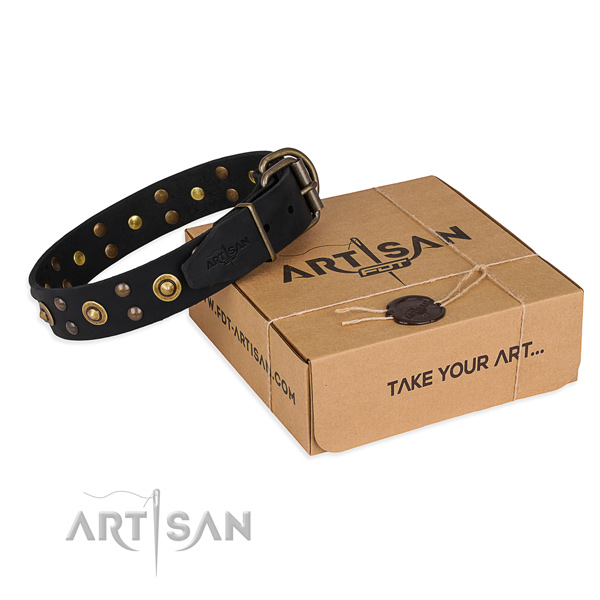 Corrosion proof buckle on full grain natural leather collar for your stylish four-legged friend