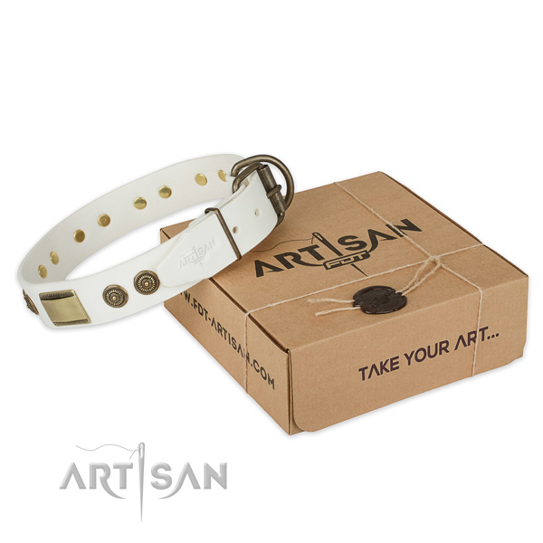Rust-proof fittings on genuine leather dog collar for stylish walking
