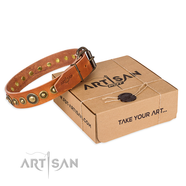 High quality full grain natural leather dog collar crafted for daily walking