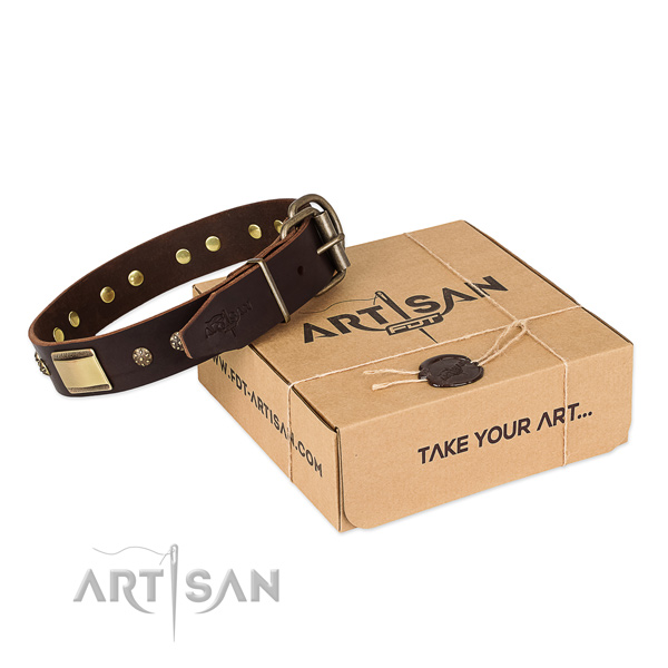 Extraordinary genuine leather collar for your lovely pet