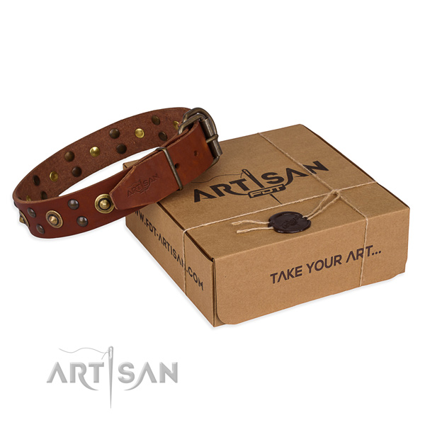 Corrosion resistant traditional buckle on full grain genuine leather collar for your impressive four-legged friend