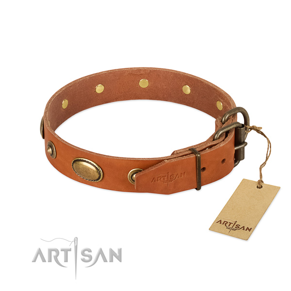 Rust-proof embellishments on full grain leather dog collar for your dog