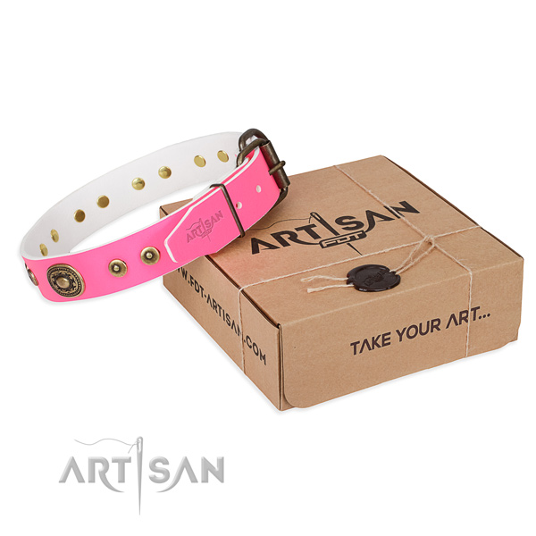 Full grain natural leather dog collar made of flexible material with reliable traditional buckle