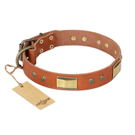 """Enchanting Spectacle"" FDT Artisan Tan Leather Belgian Malinois Collar with Old Bronze Look Plates and Round Studs"