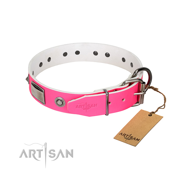 Stylish dog collar of full grain genuine leather with embellishments