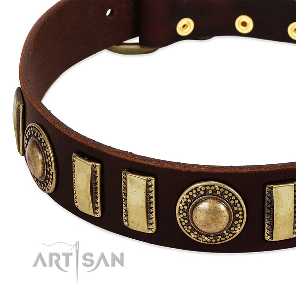 Top rate leather dog collar with rust resistant buckle
