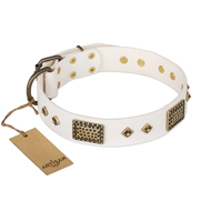 """Snow-covered Gold"" FDT Artisan White Leather Belgian Malinois Collar"