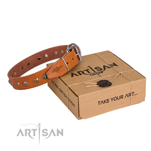 Easy wearing dog collar with Stunning rust resistant decorations