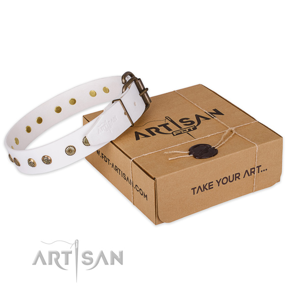 Rust-proof D-ring on genuine leather collar for your lovely canine