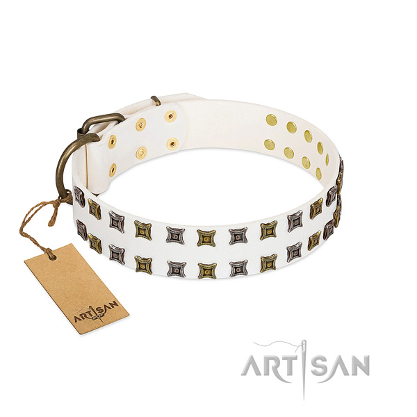 Strong genuine leather dog collar with embellishments for your dog