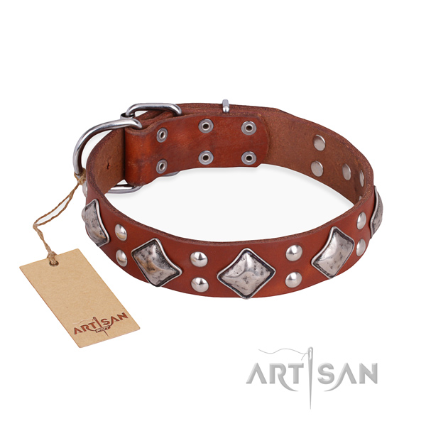 Fancy walking stylish dog collar with rust resistant buckle