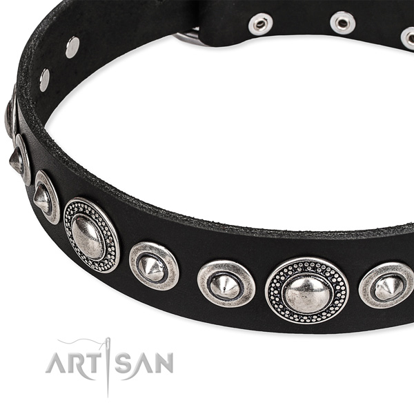 Walking embellished dog collar of reliable full grain leather