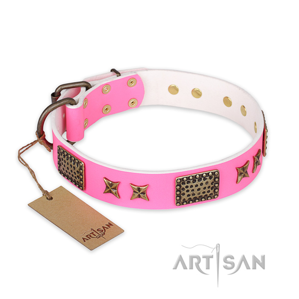 Exceptional genuine leather dog collar with durable D-ring