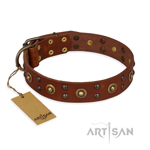 Designer genuine leather dog collar with corrosion resistant traditional buckle