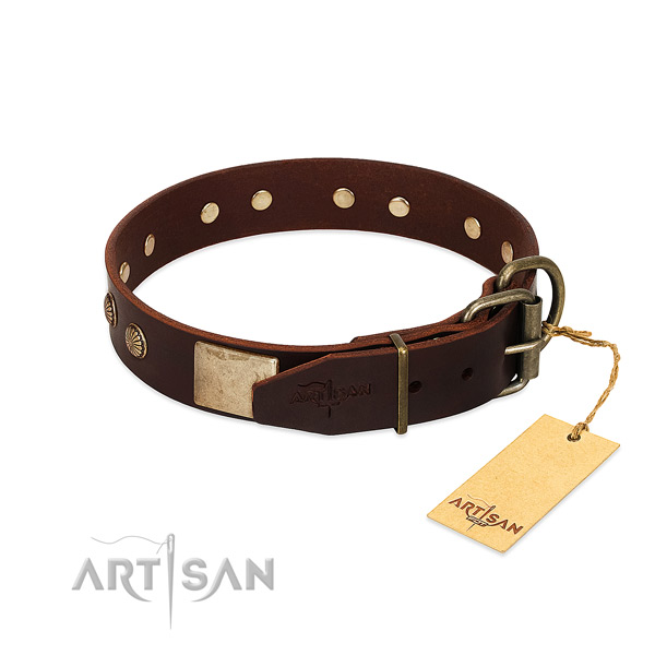 Durable fittings on everyday walking dog collar