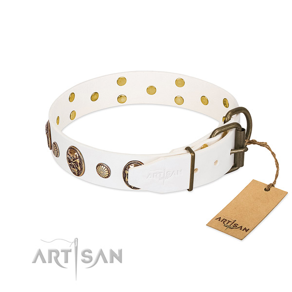 Corrosion resistant traditional buckle on genuine leather collar for everyday walking your canine